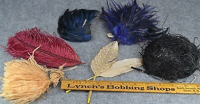 feathers colored lot Edwardian Victorian millinery hat rim antique original
