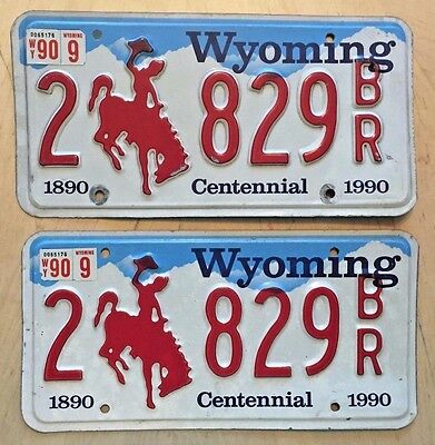 "1988 1990 Wyoming  License Plate Plates Set Matching Pair  "" 9 829 Br ""  Wy 90"