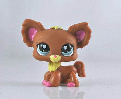 Littlest Pet CHIHUAHUA Dog Collection Child Girl Boy Figure Toy Loose LPS13