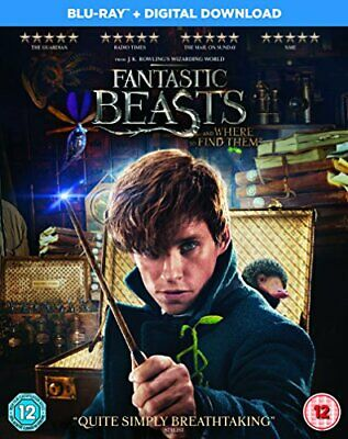 Fantastic Beasts and Where To Find Them [Blu-ray + Digital Downlo... - DVD  8HVG