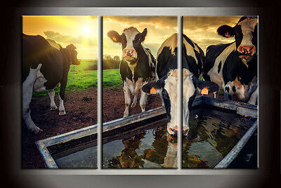 Large Wall Art Set Home Decor Cows sunrise scenery HD Picture Printed On Canvas