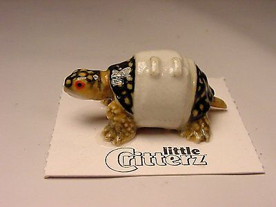 "Little Critterz - LC602 ""Acadia"" Rescue Turtle"