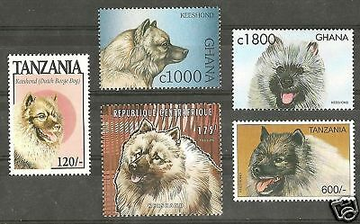 Dog Art Head Study Portrait Postage Stamp Collection KEESHOND 5 Different MNH