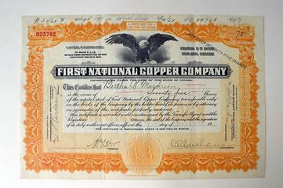 First National Copper Co., 1919 Issued Stock Certificate