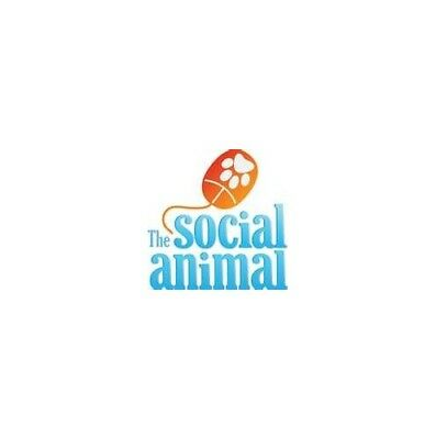 Social Animal by Aronson, Elliot Paperback Book The Cheap Fast Free Post
