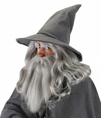 GANDALF GREY WIZARD HAT Hobbit LOTR Lord Rings Sorcerer Gray Costume LICENSED