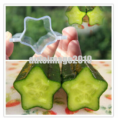 Clear Long Star Melon Shaping Mold Vegetable Growth Forming Fruit Growing Tool