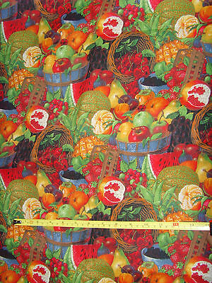Daisy Kingdom Sumer Bounty Packed Allover fabric material fruits 42 x 100 sewing