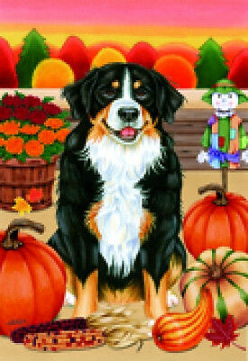 Garden Indoor/Outdoor Autumn Flag - Bernese Mountain Dog (TP) 670511