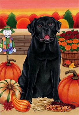Garden Indoor/Outdoor Autumn Flag - Black Labrador Retriever (TP) 670011