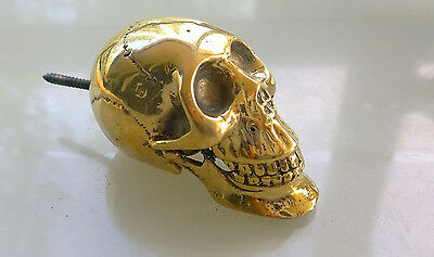 "small handle KNOB SKULL solid heavy BRASS head ONLY screw on 3"" pull"