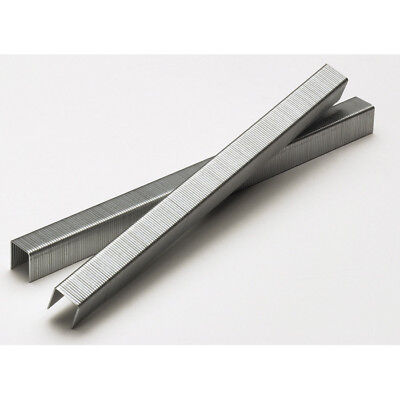 SENCO C06BAAP 22Ga 3/8 in x 3/8 in Electro-Galvanized Staples (50,000-Pack) New