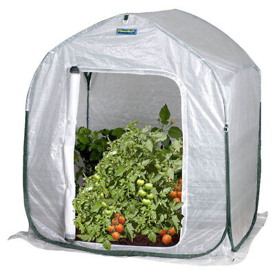 Flowerhouse 3 Ft. W x 3 Ft. D Mini Greenhouse