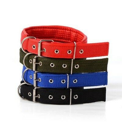 Dogs Collar Adjustable Neck Strap for Large Medium Small Pet Dog Color Necklace