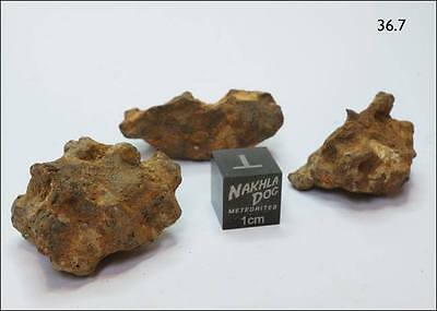 New Pallasite Meteorite from Habaswein, Kenya - 36.7 grams