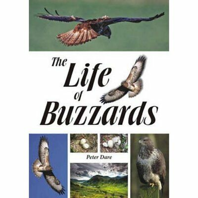 The Life of Buzzards - Paperback NEW Peter Dare (Aut 2015-06-22