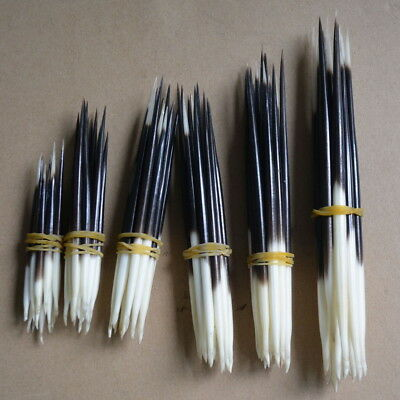 10x Porcupine Quills Jewelry Craft Hair Stick Weaving Bead Assorted Craft DIY