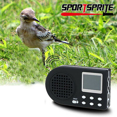 Outdoor Hunting Decoy Bird Caller Bird Sound Loudspeaker Amplifier No Control