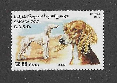 Dog Art Head & Body Portrait Postage Stamp SALUKI Spanish Sahara 1996 MNH