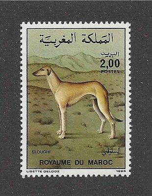 Dog Art Full Body Portrait Postage Stamp SALUKI SLOUGHI Morocco Africa 1984 MNH