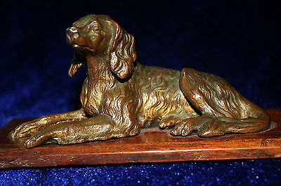 VERY FINE ANTIQUE BRONZED SPELTER AFGHAN HOUND / SETTER c1910. BEAUTIFUL!
