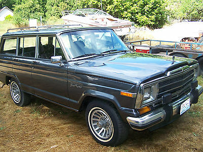 1989 Jeep Other Woodgrain Delete 1989 Jeep Grand Wagoneer - Totally Restored - Perfect Paint - Exc Cond -Sun Roof
