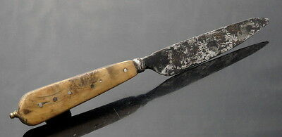 Tudor Period Wooded & Ossein Handled Cutler (L268)