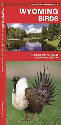 Wyoming Birds: A Folding Pocket Guide to Familiar Species by James Kavanagh (Eng