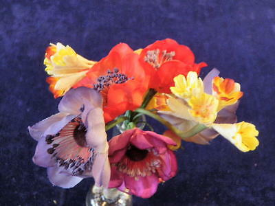 "Vintage Millinery Flower Doll Size Collection 1"" -  2"" Yellow Red Purple  H1284"