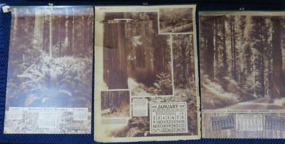(3) 1936,1937,1938 Redwood Forest Wood Products Advertising Calendars
