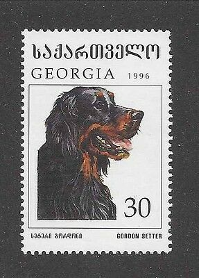 Dog Art Head Portrait Postage Stamp GORDON SETTER Georgia Russia 1996 MNH