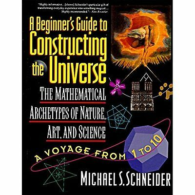 A Beginner's Guide to Constructing the Universe - Paperback NEW Schneider, Mich
