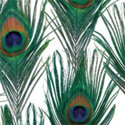 Peacock Print Tissue Paper Multi Listing 500x750mm