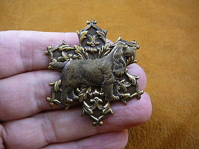 (b-dog-24) Cocker Spaniel breed puppy star scrolled brass pin pendant dog dogs
