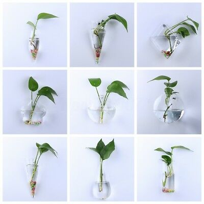 Irregular Wall Hanging Glass Planter Air Plant Terrarium Flower Pots Vase Garden