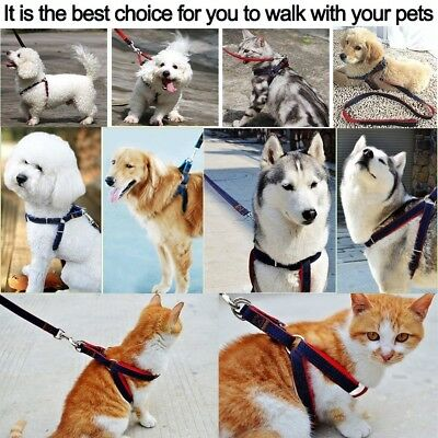 Leash Harness Dog Chain Cat Rope Belt Adjustable Collar Dogs Leash Set for Pet