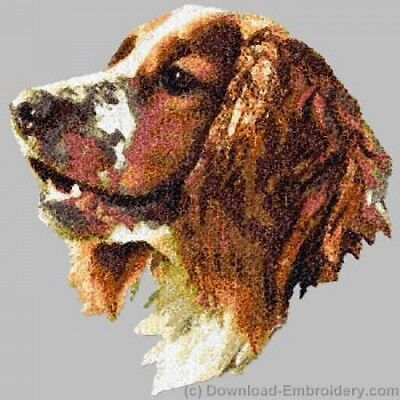 Embroidered Short-Sleeved T-Shirt - Welsh Springer Spaniel DLE2537