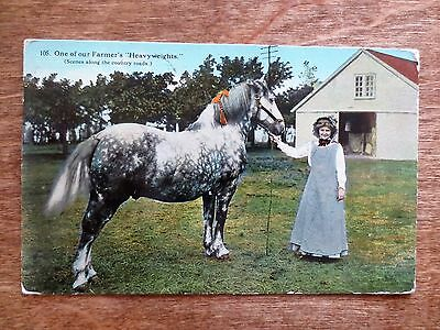 Early 1900s Our Farmer's Heavyweight Farm Scene View Horse Postcard Posted MN