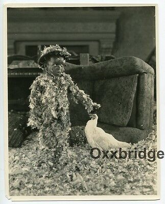 ALLEN FARINA HOSKINS Black Child Actor 1924 OUR GANG High Society Silent Film