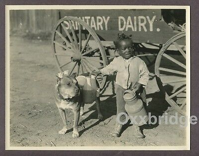 ALLEN FARINA HOSKINS Black Child Actor Our Gang 1924 Photo It's A Bear Young