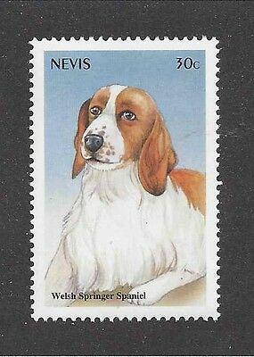 Dog Art Head Portrait Postage Stamp WELSH SPRINGER SPANIEL St Kitts & Nevis MNH