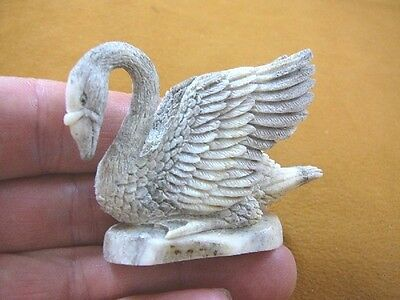 (SWAN-2) little happy gray Swan shed ANTLER figurine Bali detailed carving swans