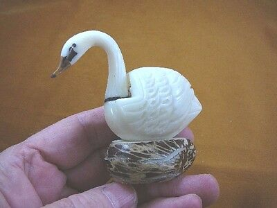 (TNE-BIR-SW-116a) white trumpeter Swan TAGUA NUT palm figurine carving swans
