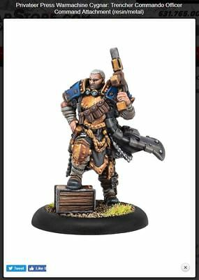 Warmachine Cygnar Trencher Commando Officer PIP31137 PreOrder Free Oversea Ship