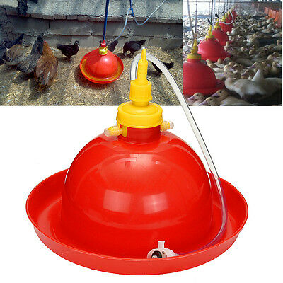 Chicken Duck Goose Automatic Water Drinker Poultry Supply Waterer w/ 69cm Tube