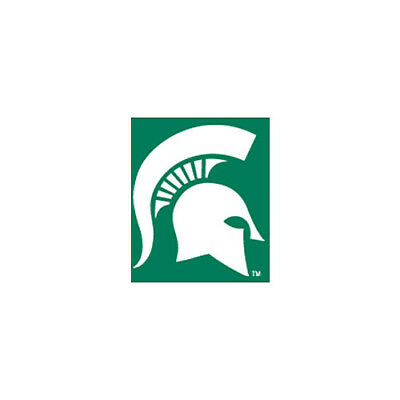 Imperial International Michigan State Spartans 8' Pool Table Cloth