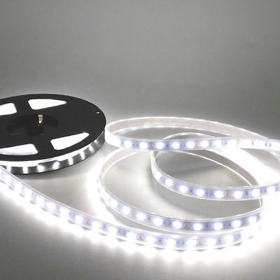 High Quality Silicon Tube decoration IP67 Waterproof 5050 SMD LED Strips 12V 10M