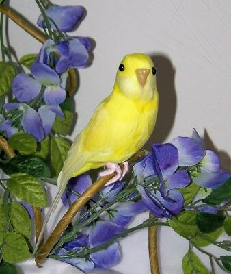 "CANARY YELLOW PARAKEET BUDGIE REPLICA Collectible FAKE taxidermy 8"" Bird prop"