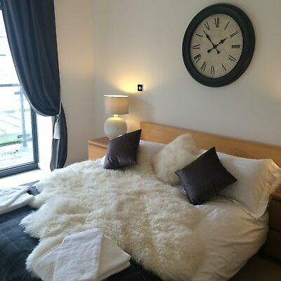 Anthony Joshua Cardiff Luxury Apartment Sleeps 4 Minutes from Stadium October 28