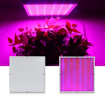 200W LED Grow Light Wachsen Licht VollSpektrum Indoor Veg Wuchs Blüte Pflanzen